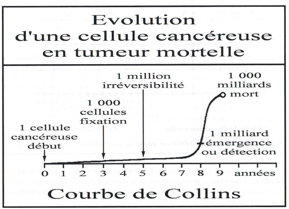 collinsBis