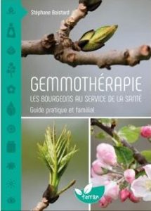 gemmotherapie-les-bourgeons-au-service-de-la-sante